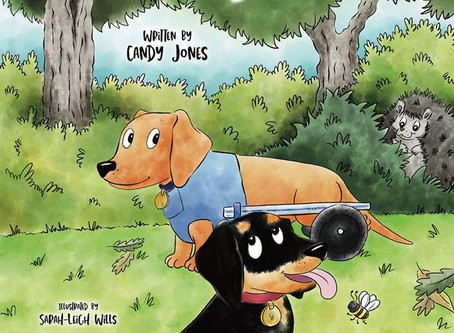 Sausage Dog Days – a new chidren's picturebook fundraising for IVDD