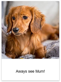 See_Mum.png