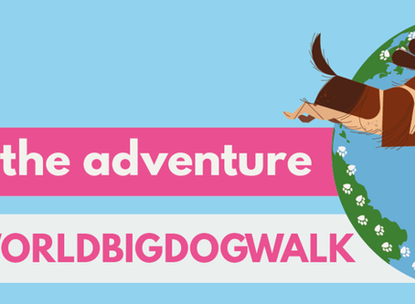 Join the virtual world big dog walk in September and support Dachshund Health UK