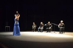 Actuacion Flamenca - Auditorio Pinto