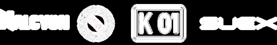 logo_3_BA.png