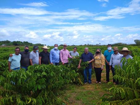 Prefeito Mazinho Serafim vai à Mâncio Lima conhecer cultivo de café clonal