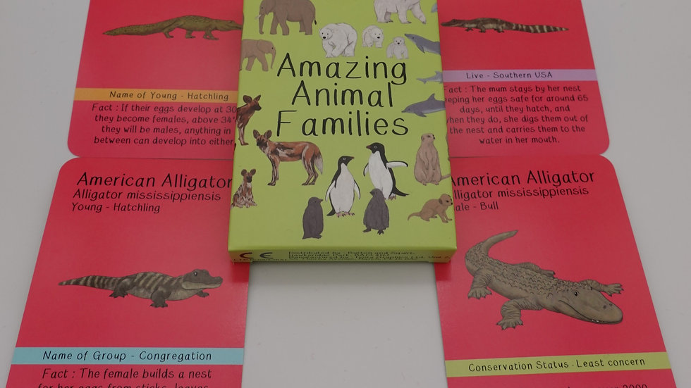 Amazing Animal Families Cards