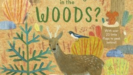 Who Is Hiding In The Woods Lift the Flap Book