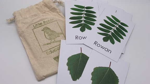 Leaf Nature Activity Pack