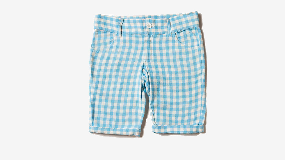 Little Green Radicals Blue Check Shorts