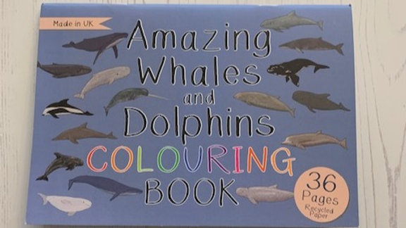 Whales and Dolphins Colouring Book
