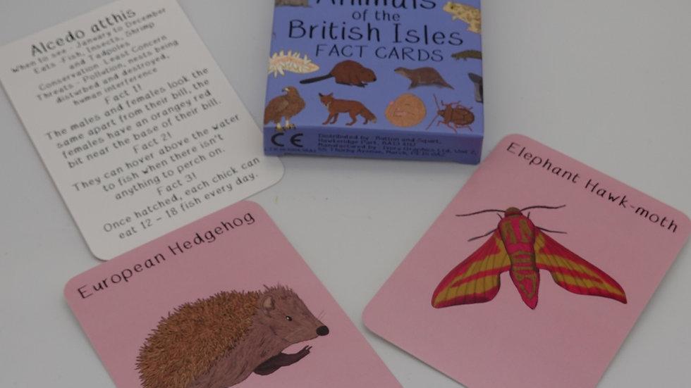 Amazing Animals of the British Isles Cards