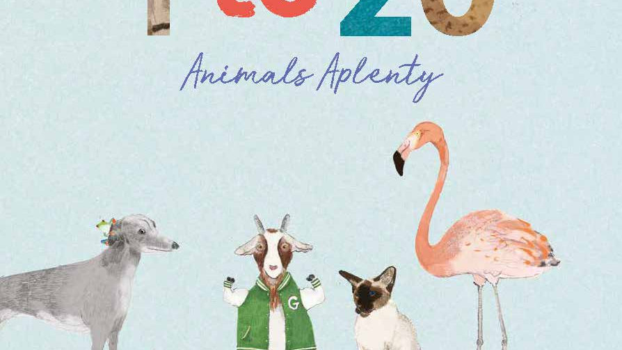 1 to 20 Animals Aplenty Counting Book
