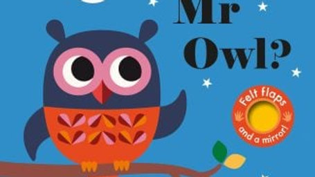 Where Is Mr Owl Felt Flap Book