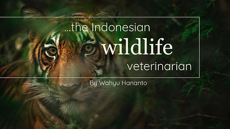 Indonesian Wildlife Vet 2.0.jpg