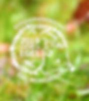 egelsymposium.jpg