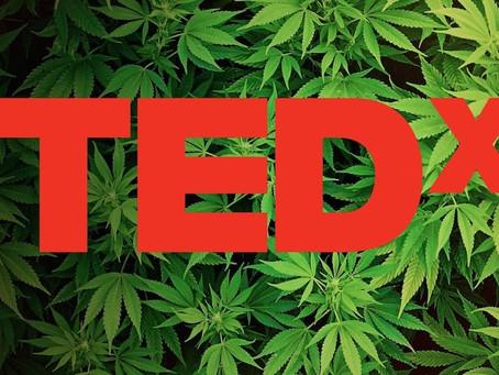 A brief intro to medical marijuana