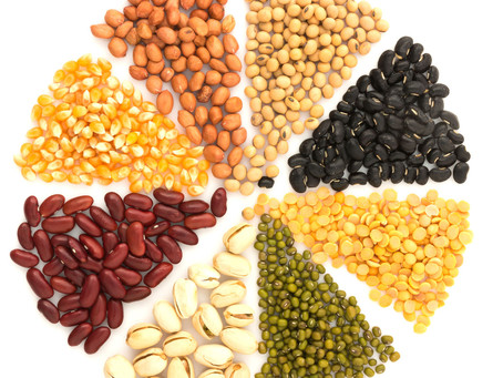 Packing Plant Protein