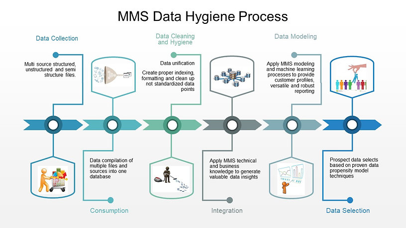 MMS Data Hygiene Process.jpg