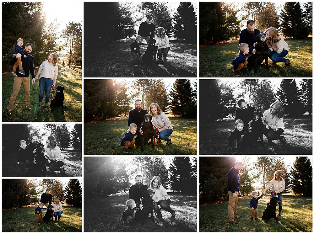 family pictures, photography, wisconsin photography, family portraits, pet portraits