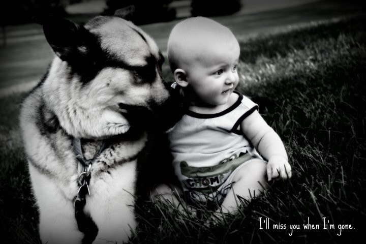 baby and dog, pet loss, photography
