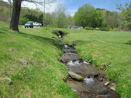 4/28/2020 Four New Creeks in Buncombe!