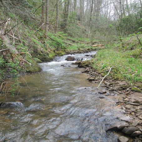 2019-04-13 Five New Creeks!