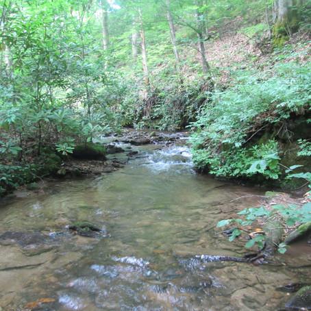 6/24/20 New Creeks 974-976!