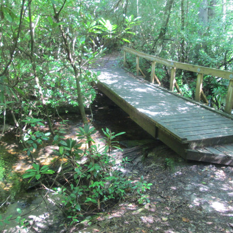 2018-07-06 New Creeks #859 and #860