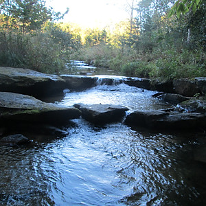 #847 Big Sandy Creek, Alleghany County
