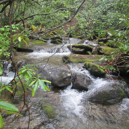 2018-05-07 New Creek #857 Slaty Branch