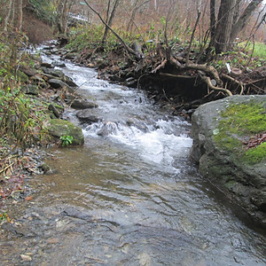 Martin Creek, Avery County