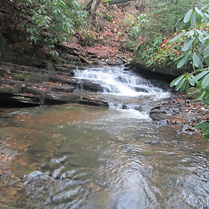 #849 Little Plumtree Creek, Avery County
