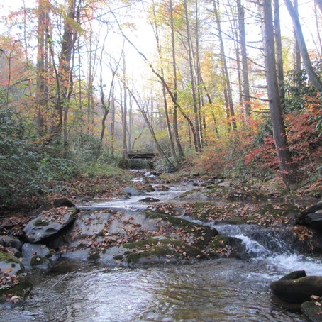 10-19-2020 New Creeks in Madison County