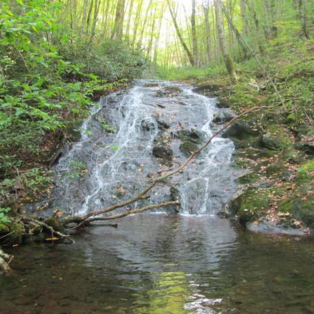 October 10, 2020 New Creek #985!