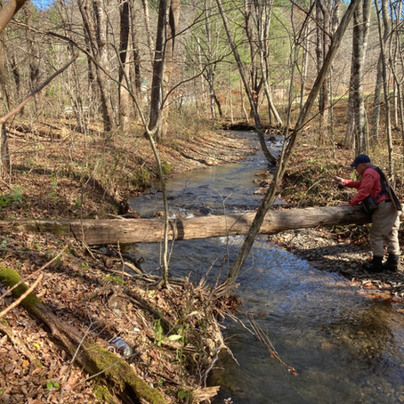 November 3, Watauga County, 990 Creeks!