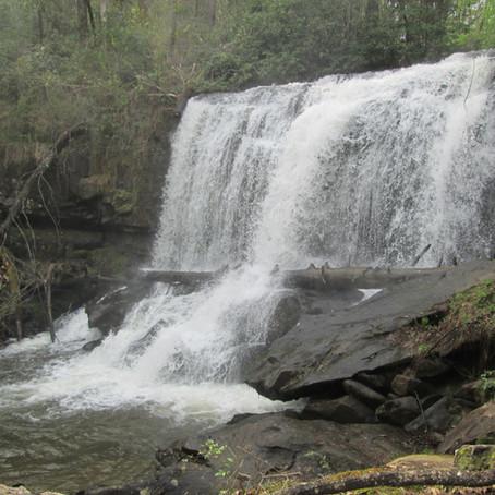 2019-04-10 North Shoal Creek Falls