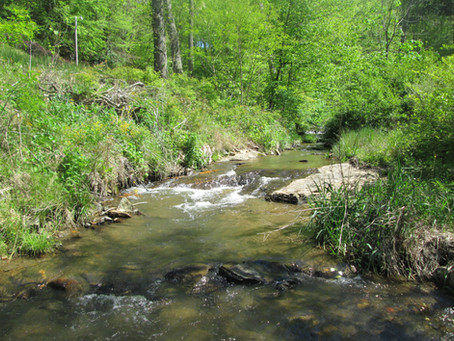 5/15/20 New Creeks in Yancey County