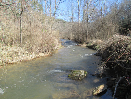 February 24, 2021   New Creeks 991 and 992 in Swain County