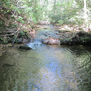 #846 Rich Mountain Creek, Wilkes County