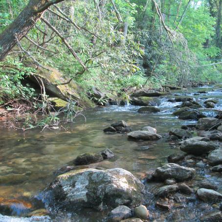 2018-05-06 New Creek #856 Pool Creek