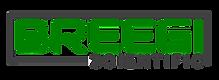 BSI-Logo-final-C.png