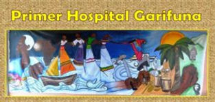 Primer-Hospital-Logo-300x143.jpg