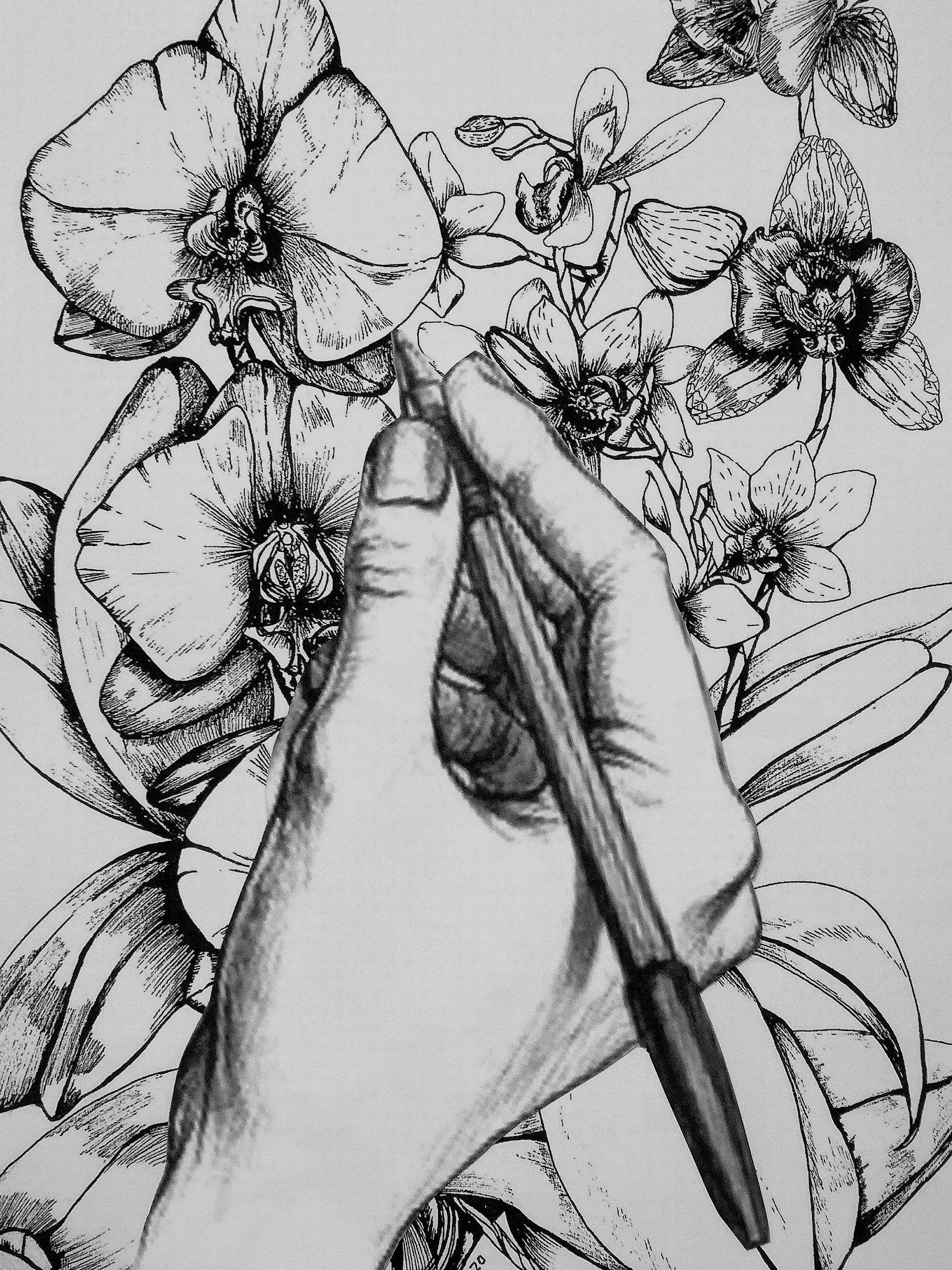Sketching Workshop with Moira Milne