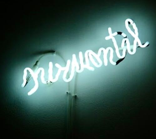 surmontil, 2010, 20/40 cm, edition de 5 et 3 épreuves d'artiste