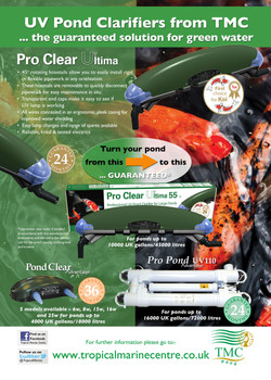 UV clarifier advert design