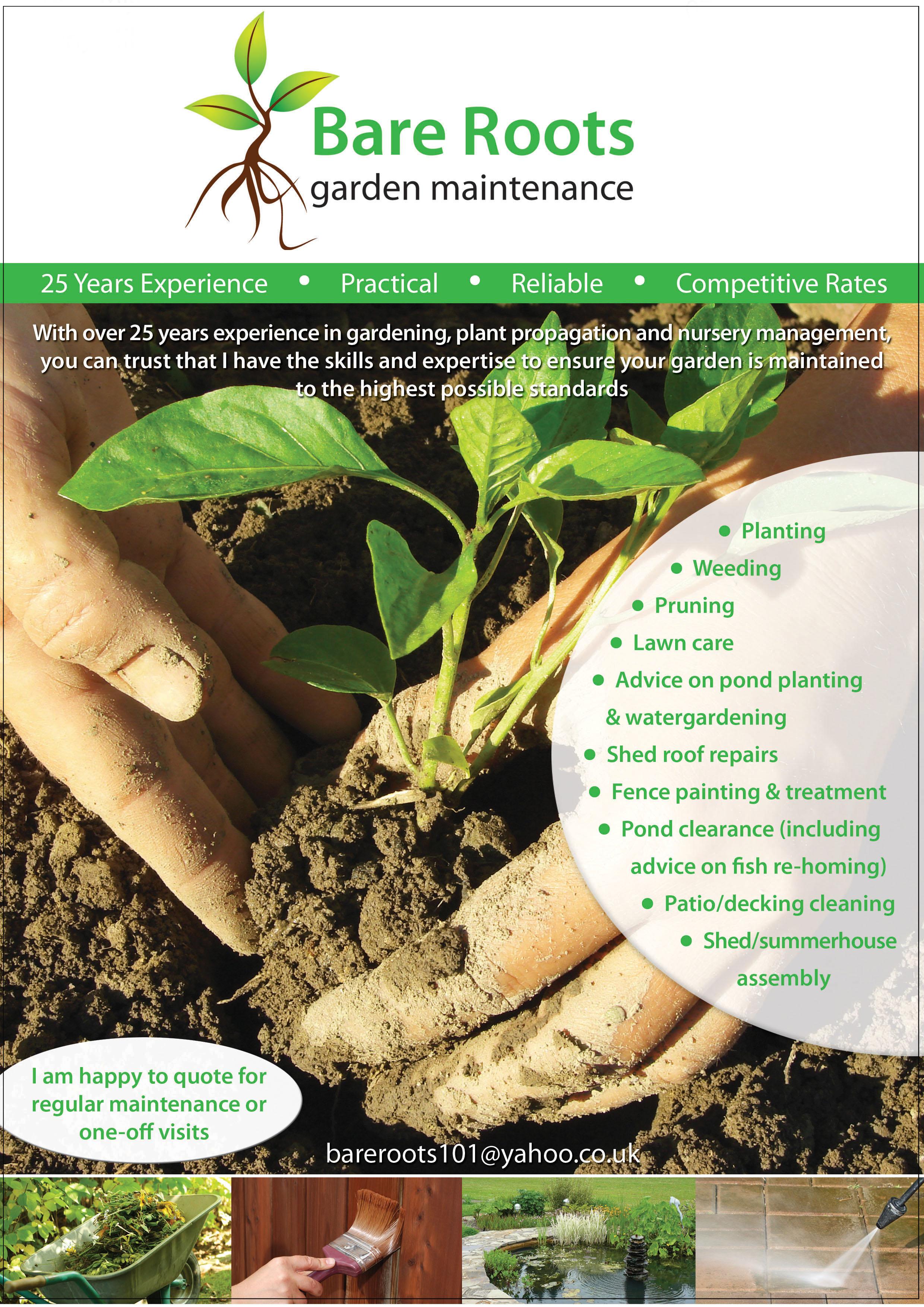 Bare Roots Gardening flyer design