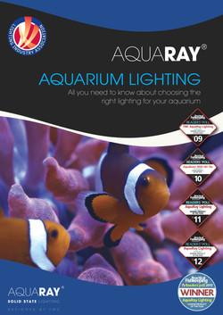 Lighting brochure design