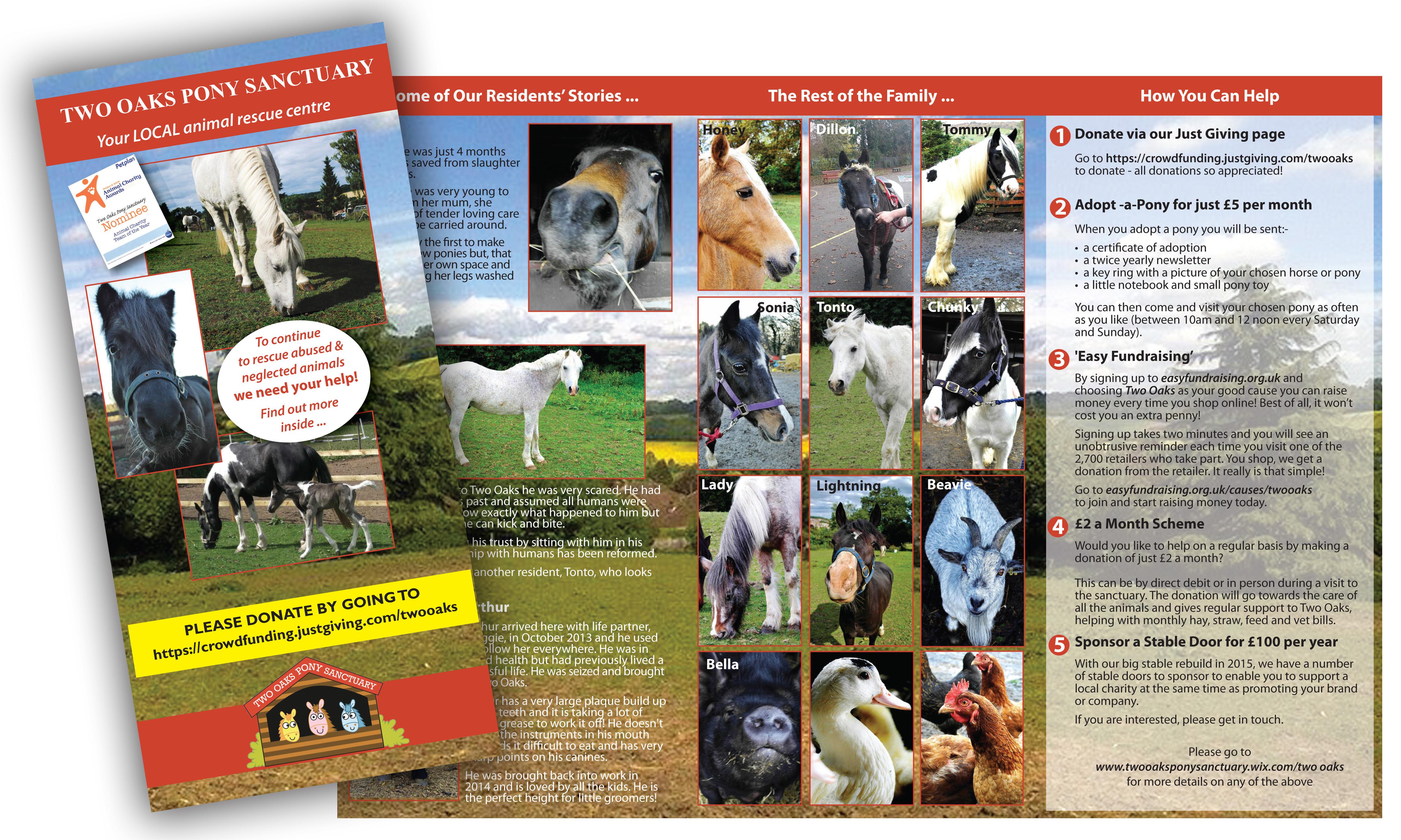 Two Oaks Sanctuary flyer design