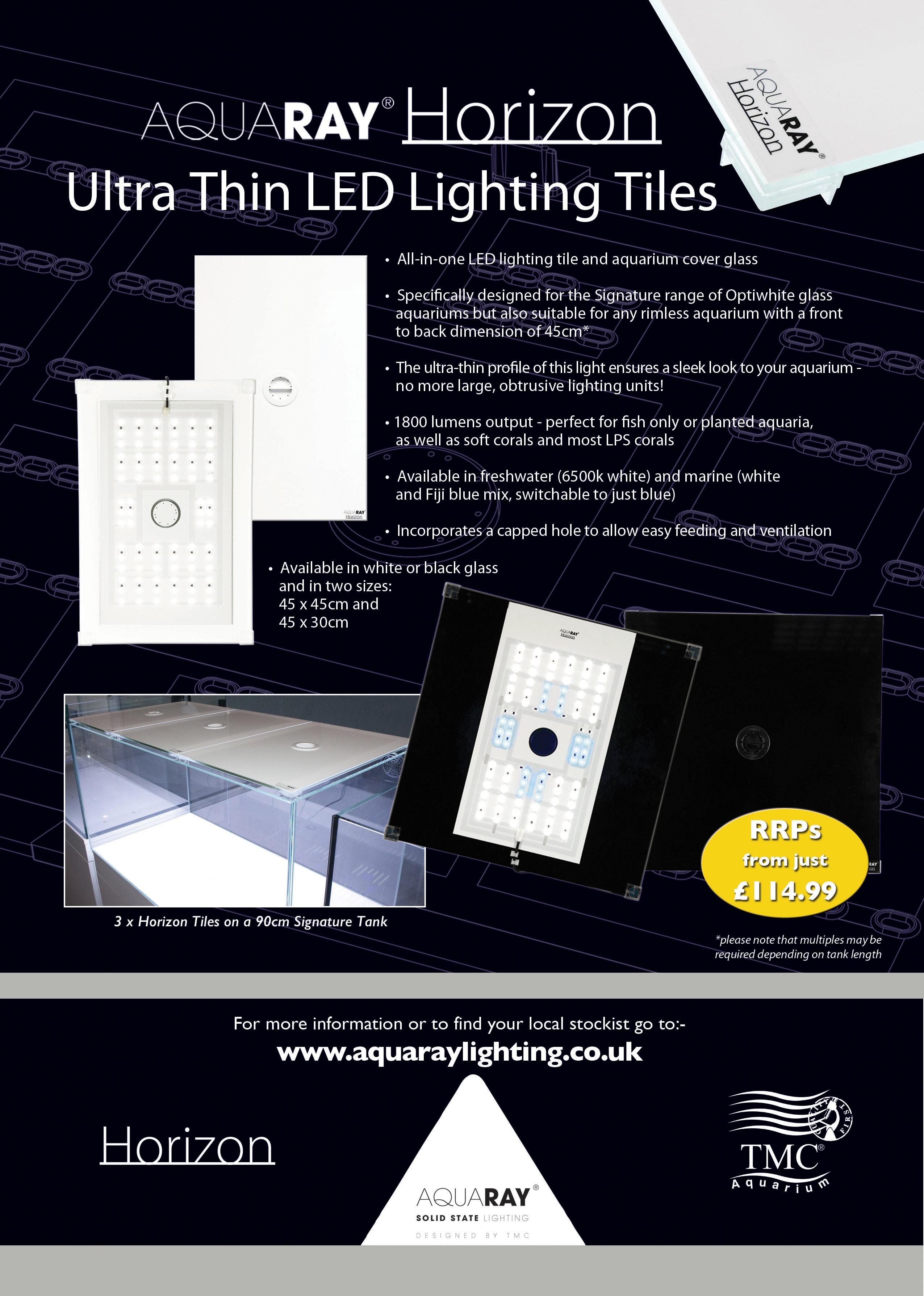 Lighting flyer design