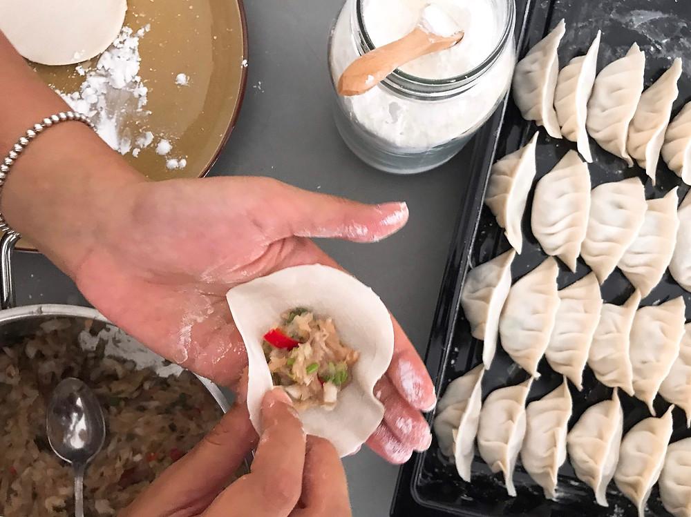 Chicken & Chive Potstickers Chinese Pan Fried Dumplings