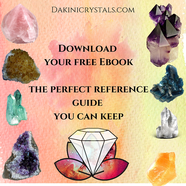 Download your free Ebook the perfect ref