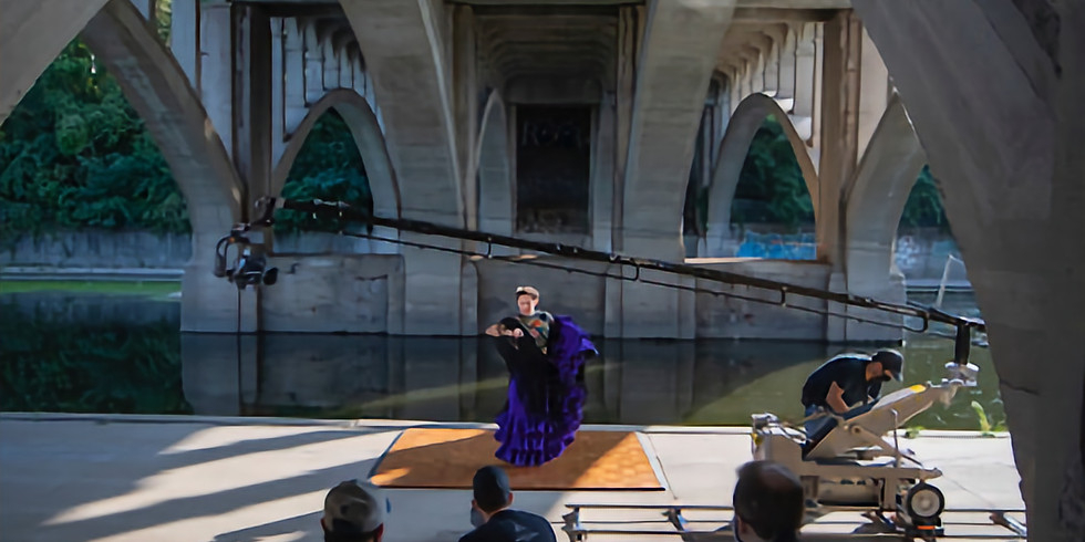 Virtual Talk and Livestream Performance at the Lied Center