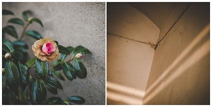 lara zacchi, store, fiore, fiori, paese, quartiere, isola, vercelli, infanzia, luce, foglie, fotografia, fotografia documentaria, photography